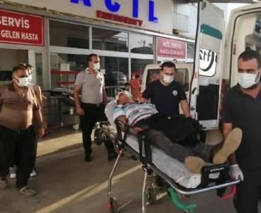 Feke'de iki aile birbirine girdi: 2 yaralı